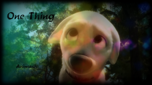 || One Thing || -Animash- by Xbox-DS-Gameboy