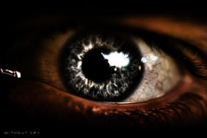 Look in my eyes 6 by WithoutCry