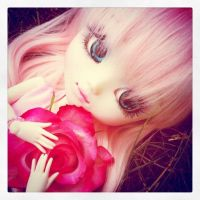 -Pullip- Rose by ArrakisxSato