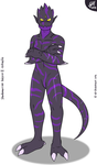 Shadowarrior (redesign) | Drako's Story by G3Drakoheart-Arts
