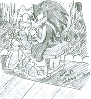Sonic and Amy Rose by Jen-C