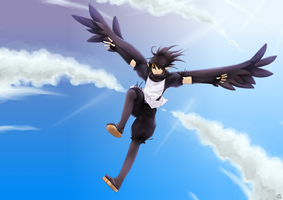 Crow's flight by Shiro-Marusu