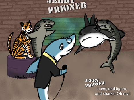 The Rest of Shark Week by wachey