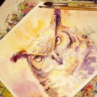 very serious owl by bemain