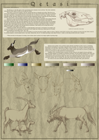 Qetasi Species Sheet -Updated- by urilium
