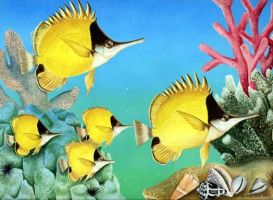 Long-nosed Butterfly Fish by joeyartist