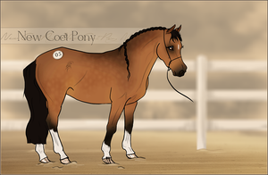 HIP #5 - New Coet Pony Adoptable by Yumpy