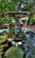 A Lions Fountain by photorealm