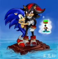 Sonic and Shadow by Moon-illusion