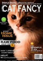 Cat Magazine Cover by rami777