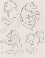 Useable Wolf Poses 2 by DrawingMaster1