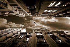 Freedom by serhanseven
