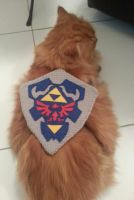 Link Shield for Vincy by shadow-bahar