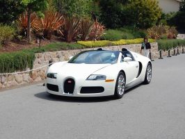 Bugatti veyron in solid silver by partywave on deviantart for World wide motors carmel