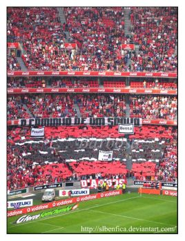 Caminho d1 sonho by LostImages by SLBenfica