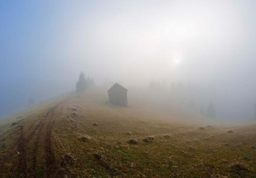 Lost in fog by lica20