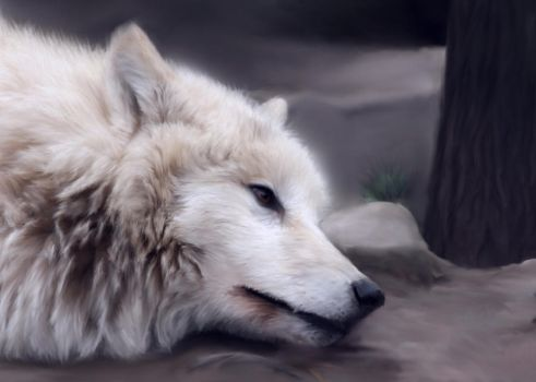 Wolf Painting by Angelic-Bear
