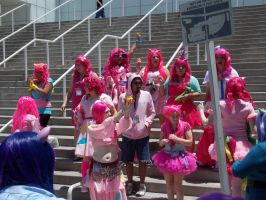 AX2014 - MLP Gathering: 22 by ARp-Photography