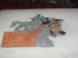 Balto and Aleu  drawing by demonlovers