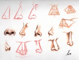 Nose references by Mutsumipat
