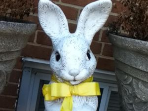 With a Yellow Bow