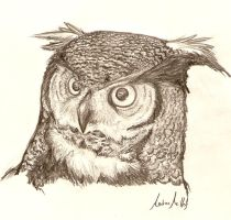 Horned owl by ShinigamiNeo