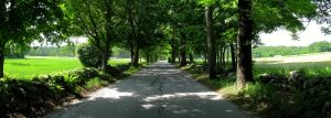 Old Farm Road Panoramic by daedalusnova