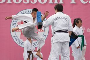 2015 NCCBF Karate Demonstration by axdestroyer