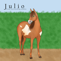 Julio by Elineeey