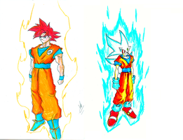 Saiyan God and Hedgehog God by kaiserkleylson