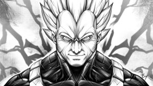 Vegeta, Sayian Prince by TBoy85