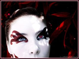 I see Red by candarama