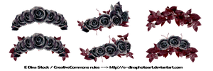 PNG Stock Floralwreath dark roses by E-DinaPhotoArt