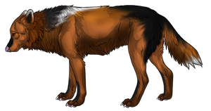 Realistic colored wolf adoptable CLOSED by WubWubTastic