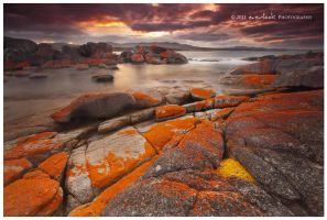 Bay of Fires by Dee-T