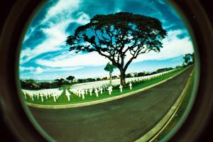 fisheye - road to your grave by jcgepte