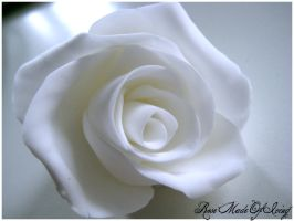 Rose Made Of Icing by Photogenic5