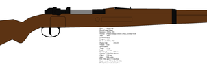 Wz. 29 Polish rifle by kfirpanther3