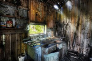 ...the abandoned shed by SAMLIM
