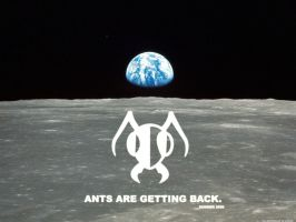 Ants Are Getting Back by sumowski