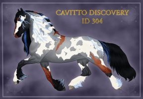 Cavitto Custom Discovery ID 304 by omgitsacat