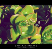 Birth of Nature by Envy07