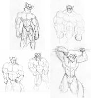 Muscle Furry Guys 25 by CaseyLJones