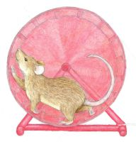 Mouse On Wheel by Wolfiesprite