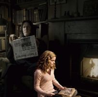 Snape and Hermione by the fire by ashiebug
