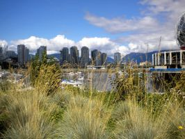 Downtown Vancouver 2 by puffthemagicdragon77