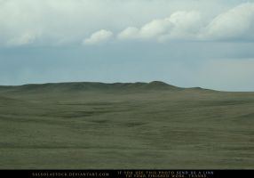 High Plains by SalsolaStock