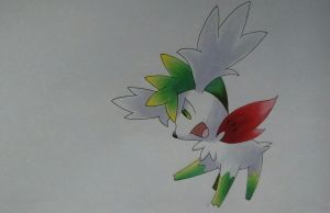 Shaymin - Pokemon by Pandaroszeogon