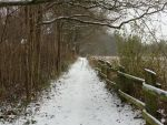 Peaceful Snowy Trail by SofiaHaase
