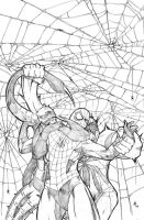 Tangled Web by Ejay32